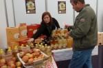 Međunarodni gospodarski sajam 2011